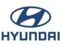 Hyundai Motor Company (Hyundai)